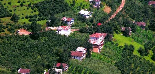 أين تقع مدينة طرابزون التركية