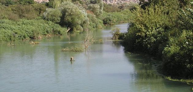 أين يوجد نهر العاصي