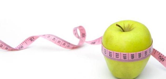 كيف تخسر وزنك بدون رجيم