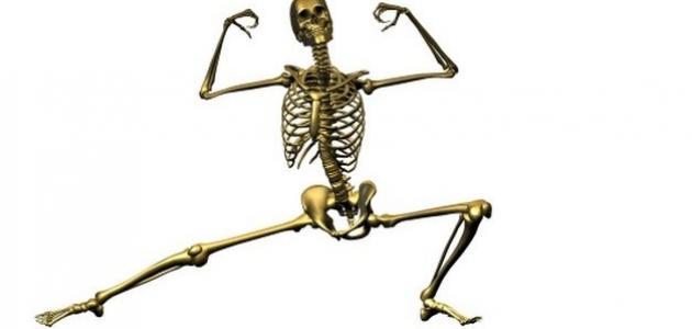 كيف تقوي العظام