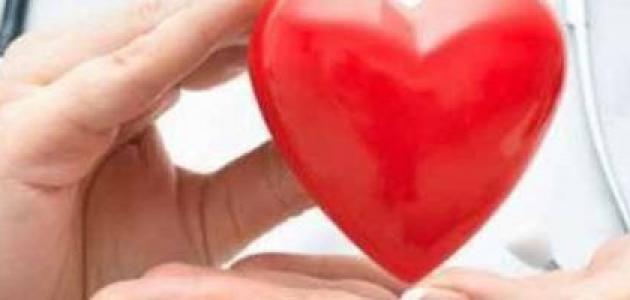 كيف أقوي عضلة القلب