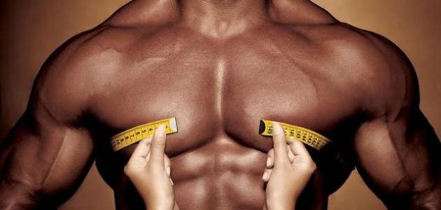 كيف تبني جسم قوي