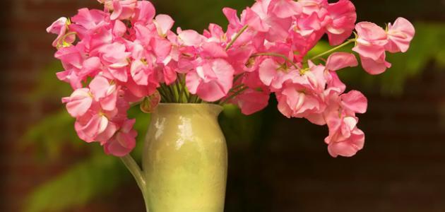 كيف أحافظ على الورد الطبيعي