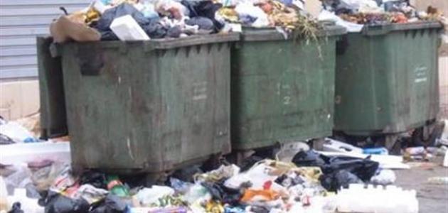 مجنون للبحث عن ملجأ التعطيل الحلول المقترحة للتخلص من النفايات المنزلية Sjvbca Org