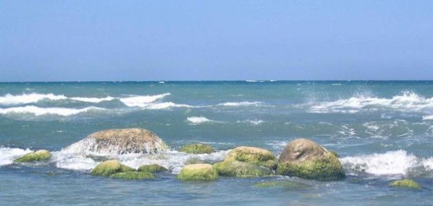 أين بحر قزوين