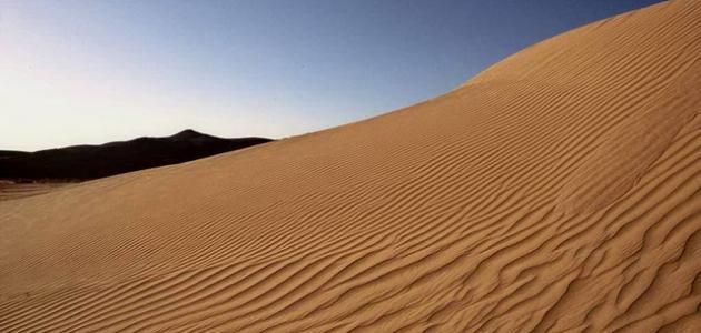 أين تقع صحراء النقب