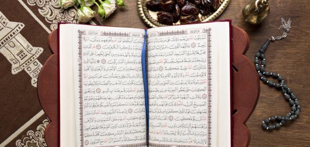 بحث عن سورة مريم