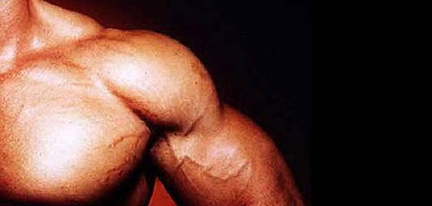 طريقة تقوية العضلات بسرعة
