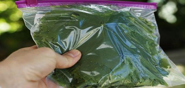 طريقة حفظ ورق العنب لفترة طويلة