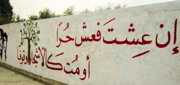 كلام عن الحرية