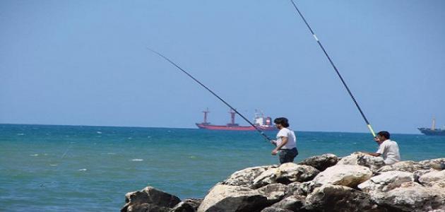 كيف أصطاد السمك بالسنارة