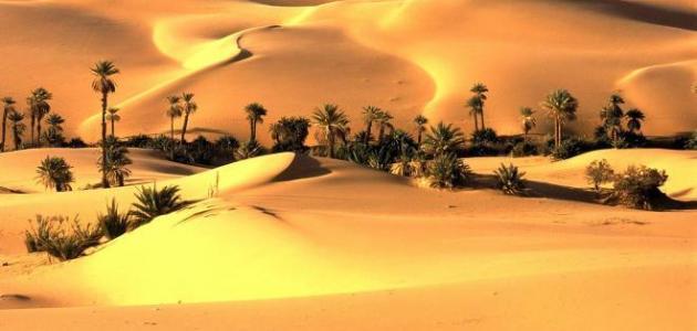 أين تقع صحراء ثار