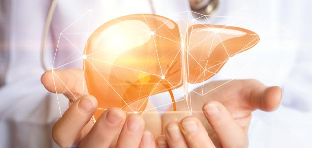 كيف نحافظ على صحة الكبد