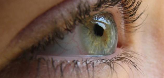 كيف نحافظ على سلامة العين