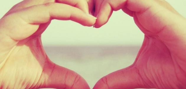 كلام في الحب المستحيل