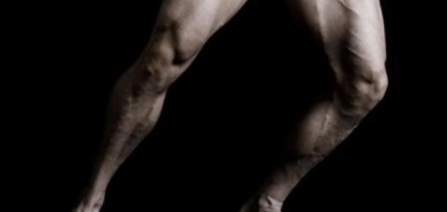 كيف أقوي عضلات رجلي