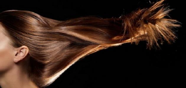 أنواع الشعر وكيفية العناية به