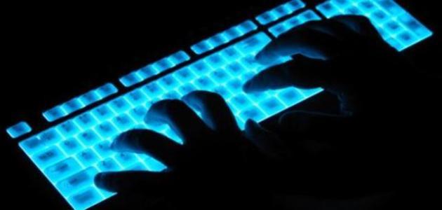 القضايا الإلكترونية