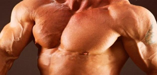 كيف تقوي عضلاتك في المنزل