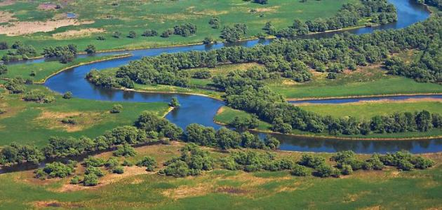 أين يقع نهر الدانوب والراين