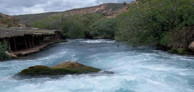 أين يوجد نهر أم الربيع