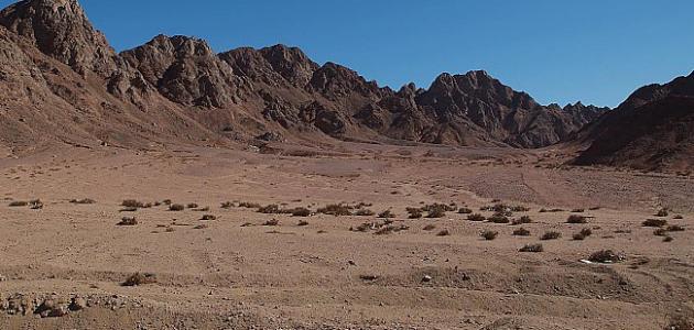أين تقع صحراء سيناء