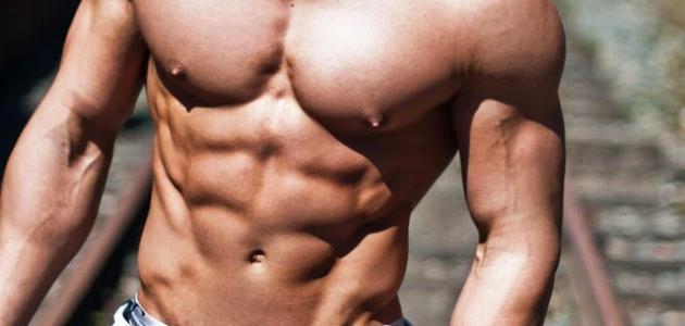 كيف أظهر عضلات البطن