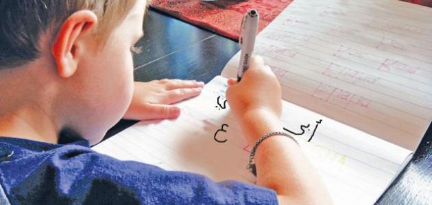 كيف تدرس اللغة العربية