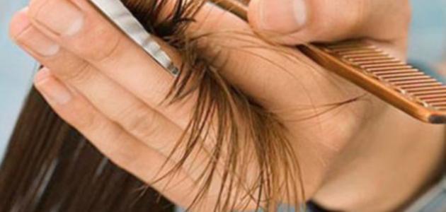 طريقة للتخلص من تقصف الشعر