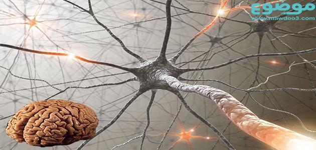 زيادة كهرباء المخ وكيفية علاجها