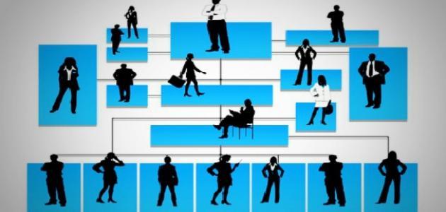 طريقة عمل هيكل تنظيمي لشركة