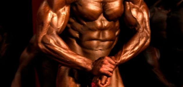 كيف أربي عضلات جسمي