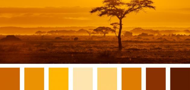 إلى ماذا يرمز اللون البرتقالي
