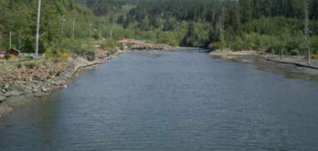 أين يصب نهر العوجا
