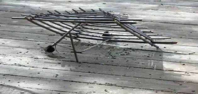 طريقة صنع فخ لصيد العصافير