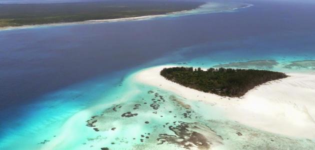 أين تقع جزيرة بمبا