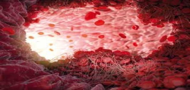 كيف يحدث تجلط الدم