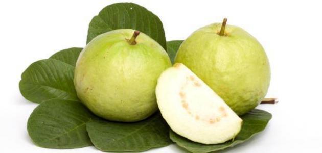 كيف أستخدم ورق الجوافة للكحة