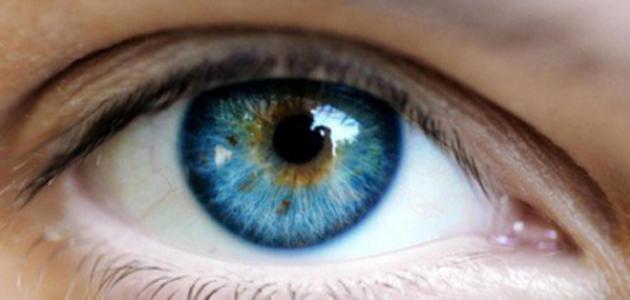 كيف نحافظ على صحة العين