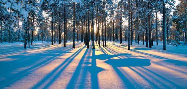 كم مدة فصل الشتاء