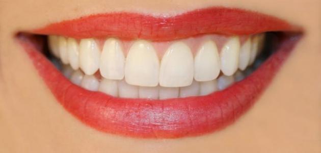 كيف نهتم بالأسنان
