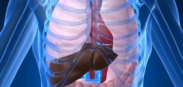 كيف تؤثر العناصر الضارة على جسمك