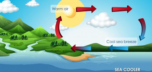 كيف يحدث نسيم البر والبحر والوادي والجبل