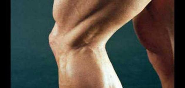 كيف تقوي عضلات الفخذ