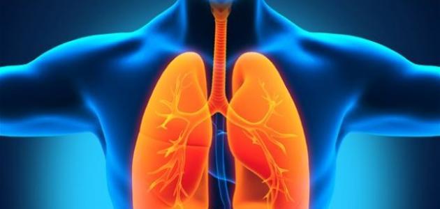 كيف يتم سحب الماء من الرئة