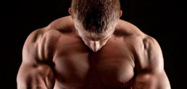 كيف تقوي عضلات كتفيك