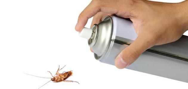 طريقة سهلة للتخلص من الصراصير