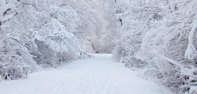 كيف يتكون الثلج والجليد