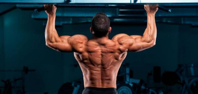 كيف تقوي عضلات الجسم