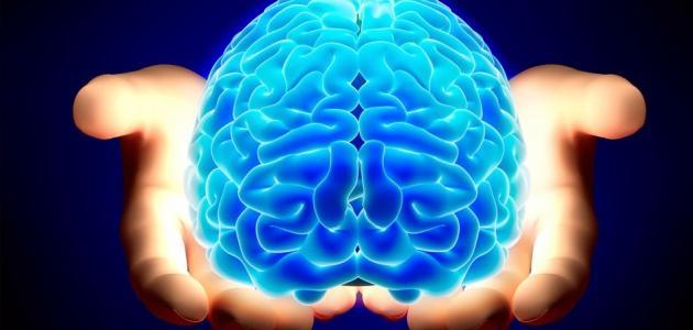 كيف تجعل عقلك يعمل بكامل طاقته
